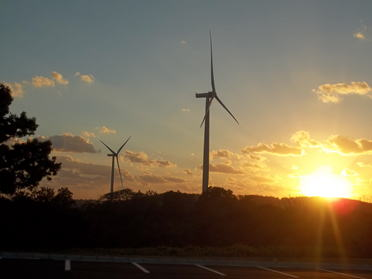 Awara Wind Farm on Oct. 17, 2014
